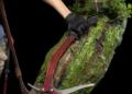 Pokochejte se soškou Lary Croft za 800 dolarů shadow of the tomb raider 6