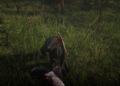 Velká galerie z hraní Red Dead Redemption 2 Red Dead Redemption 2 20181031183253