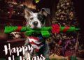 Vydavatelé a vývojáři vám přejí šťastné a veselé Vánoce 46323397642 2e01904fc4 o