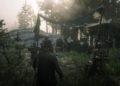 První dojmy: Red Dead Online – divočejší než Divoký západ Red Dead Redemption 2 20181130180439