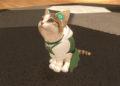 Štěňátka a koťátka vezmou Switch útokem ještě letos Little Friends Dogs and Cats 2019 02 28 19 002