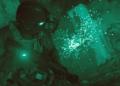 Představeno nové Call of Duty: Modern Warfare. Vrací se kapitán Price CoD Modern Warfare 05