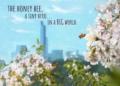 Recenze Bee Simulator Bee Simulator 20191108085121