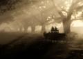 Zahraniční dojmy z PC verze Red Dead Redemption 2 rdr2 pc screenshot 016 1572568750849 1024x576