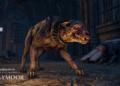 Recenze The Elder Scrolls Online: Greymoor 2507465e7cd19de90b77.52331821 BRANDED ESO Greymoor Cursebound Creature branded