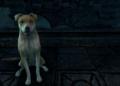 Recenze The Elder Scrolls Online: Greymoor Screenshot 20200530 215556