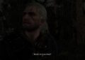 Recenze The Witcher: Farewell of the White Wolf 0D411A80 E720 40B0 A053 94F91D8C9505